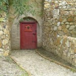 To the wine cellar with the collection of best regional wines
