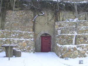 Winter red wine cellar